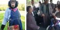 [คลิป]น้ำใจลิง!! ลุกให้คนแก่นั่งบนรถเมลล์