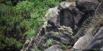 ตะลึง!!! พบพระพุทธรูปแฝงตัวอยู่บนภูเขาลึกลับ