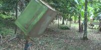 ไอเดียเก๋!! ชาวสตูลคิดวิธีไล่ลิงบนเขาลงมากินผลไม้ในสวน