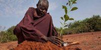 ชายชาวบูร์กินาฟาโซ ปลูกพืชแบบดั้งเดิม เปลี่ยนทะเลทราย..เป็นพื้นที่สีเขียว