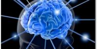 วิธีพัฒนาสมอง ให้เก่งขึ้น ( DANIEL COYLE ) …