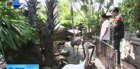 ว้าวเห็นแล้วอึ้ง!!! บ้านสวนสัตว์ มีสัตว์เลี้ยงหายากทั้งในประเทศและต่างประเทศ 200 ชนิด