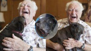 คุณทวดวัย 104 เผยเคล็ดอายุยืน – เลี้ยงหมาให้ยึดเหนี่ยวจิตใจกัน