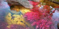 แม่น้ำ 5 สี the river of five colors ที่เดียวในโลก