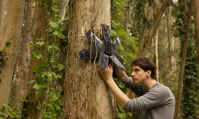 """""""โทรศัพท์เก่า"""" แต่ยังมีค่า นักวิทย์นำมาติดตั้งในป่า เพื่อป้องกันปัญหาลักลอบตัดไม้"""