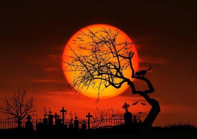 สุดจะคาดเดา!!!!ในคืนวันพระจันทร์เต็มดวง...เกิดอะไรขึ้น ที่โลกมนุษย์ สวรรค์ และนรก