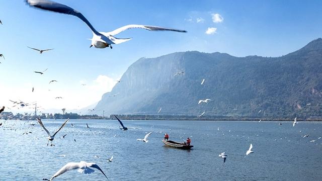 """พลิกฟื้น """"ทะเลสาบคุนหมิง"""" หลังน้ำเสียมานาน 30 ปี !!"""