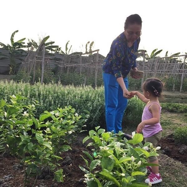 """ชีวิตเรียบง่ายของ """"เสี่ยตา"""" ปัญญา นิรันดร์กุล ทุกวันนี้ยังปลูกผักกินเอง"""