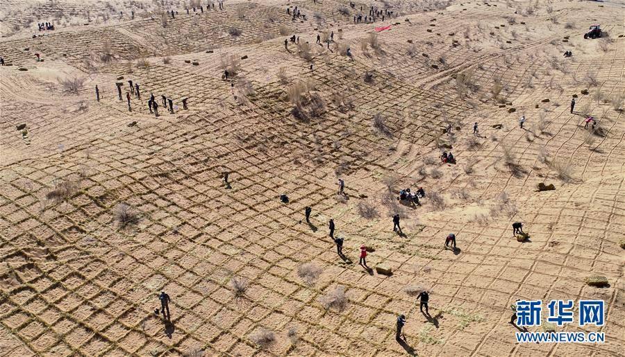 สู้ธรรมชาติ จีนปูพรมเทียมสู้ทะเลทราย !!
