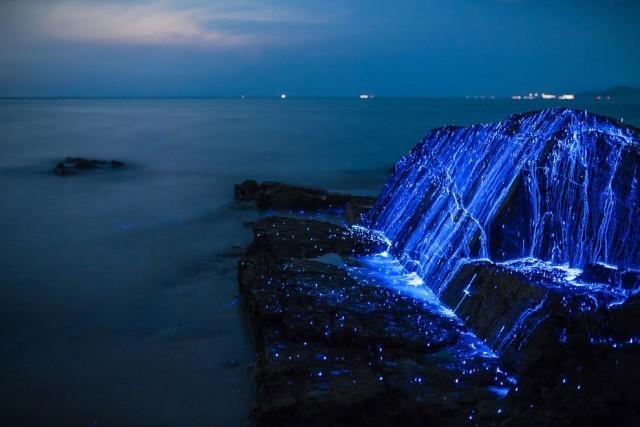 """อัศจรรย์!!! """"ทะเลเรืองแสง ก้อนหินร้องไห้"""" ความสวยงามอันน่าทึ่งในประเทศญี่ปุ่น"""