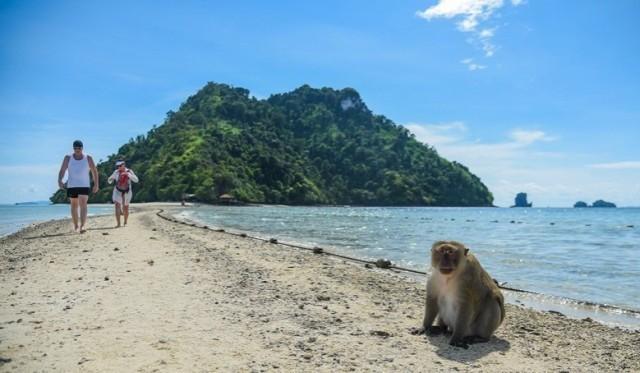 """อันซีนไทยแลนด์ """"ทะเลแหวก"""" แห่งอันดามัน ..."""
