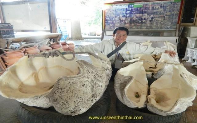 หอยมือเสือยักษ์ 8 ล้านปี!!! ที่ วัดเจดีย์หอย ปทุมธานี