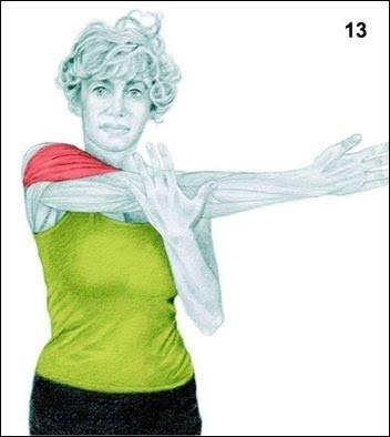 34 ภาพท่ายืดกล้ามเนื้อ ทำแล้วได้ส่วนไหน ดูไว้เราออกกำลังกายถูกจุดหรือเปล่า