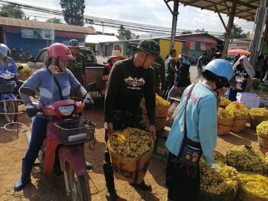 จังหวัดอุตรดิตถ์ รณรงค์เชิญชวนบริโภคลองกองในพื้นที่ ช่วยเหลือเกษตรกร