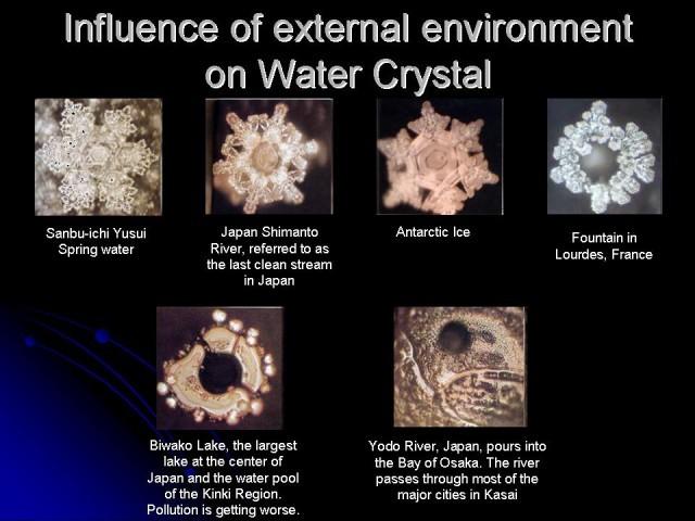 เผยผลวิจัยยืนยันชัด! ผลึกน้ำ สภาพแวดล้อม (ดีหรือเลว) สิ่งมีชีวิต มีความสัมพันธ์กัน อย่างคาดไม่ถึง