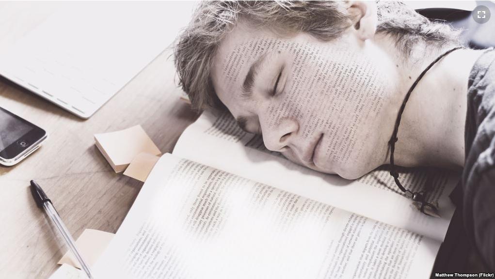 ผลการศึกษาชิ้นใหม่พบคนเราสามารถเรียนภาษาได้ขณะนอนหลับ